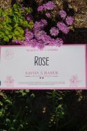 Shaving Soap Envelope - Rose